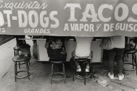 http://nikstrangelove.com/files/gimgs/th-20_DogsandTacos.jpg