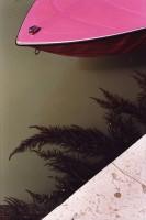 http://nikstrangelove.com/files/gimgs/th-23_pinkboatandseaweed.jpg