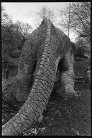 http://nikstrangelove.com/files/gimgs/th-48_megalosaurus1.jpg