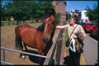 http://nikstrangelove.com/files/gimgs/th-52_Horse&Lady_v2.jpg